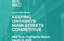 dms-mid-term-hightlights-report-march-2019